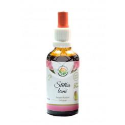 Salvia Paradise Štetka lesná AF tinktúra 50 ml