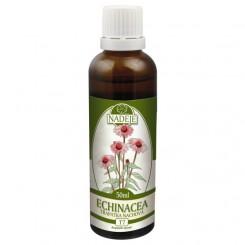 Echinacea bylinná tinktura 50 ml